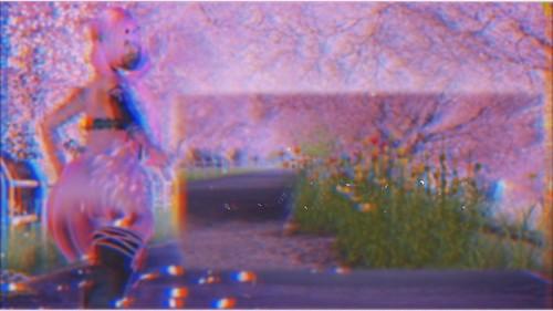 VideoBlog ●29 Sakura