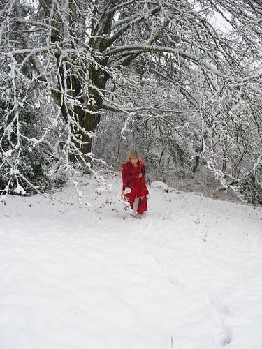 Snow Shoes?
