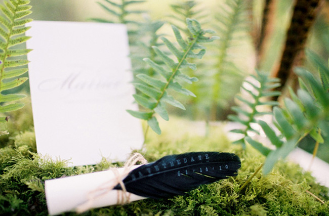 feather-wedding-save-the-date