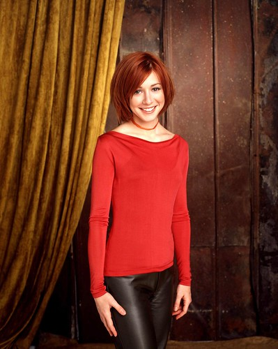 buffy-alyson-hannigan-willow-dvdbash27