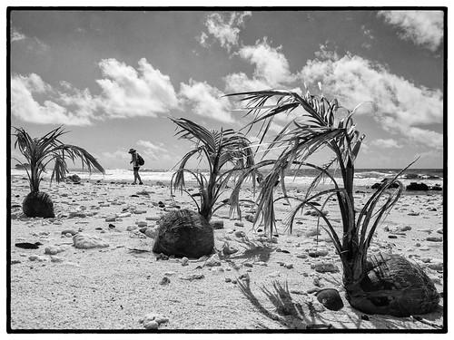 Pointe Sauma, Alofi, Futuna, 2018