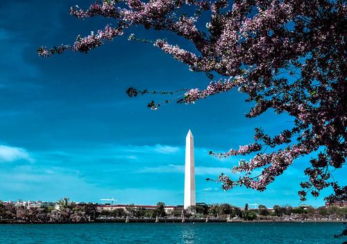 Washingtone ...
