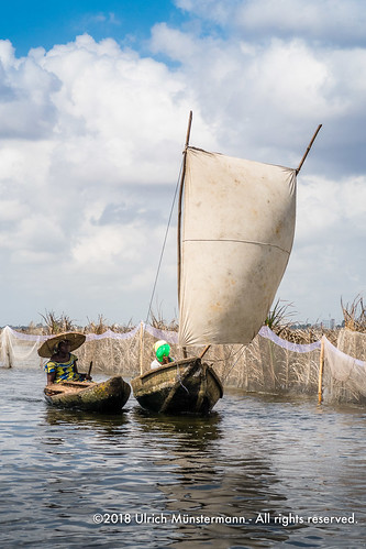 Women returning in their sailboat from the lake shore market, Lake Nokoué, Benin