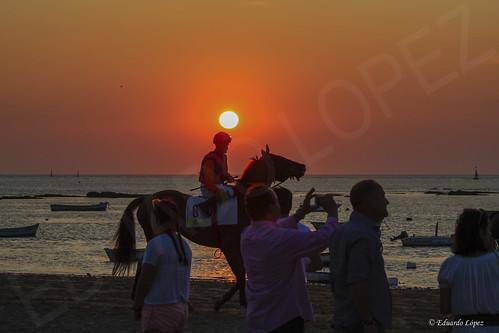 ATARDECER EN LAS CARRERAS * HORSE RACING SUNSET