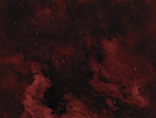 NGC 7000 area