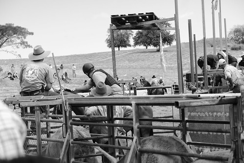 Rodeo Backstage