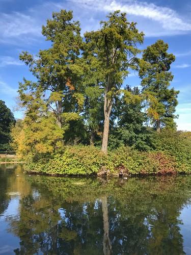 Autumn at Kew Gardens, London, England