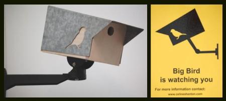 urbanbirdbox
