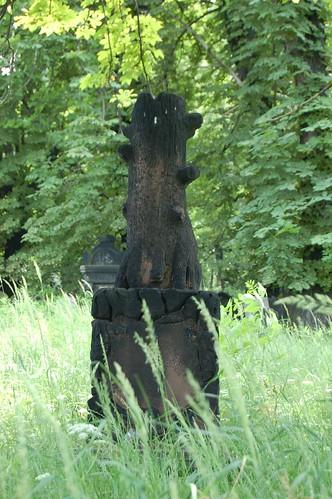 Tree of stone / Drzewo z kamienia