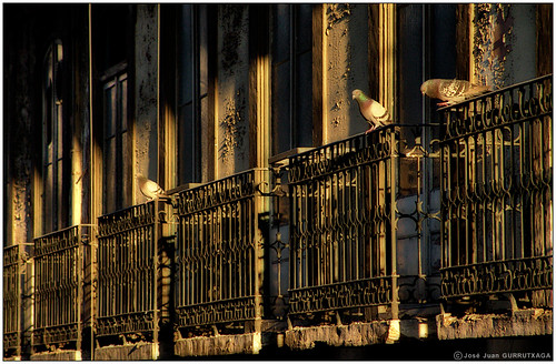 Luces de Lisboa