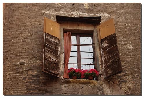 Bologna è una vecchia signora... ON EXPLORE