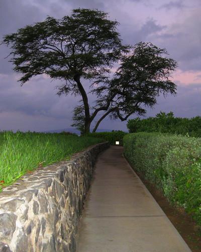 Wailea Point Keawe