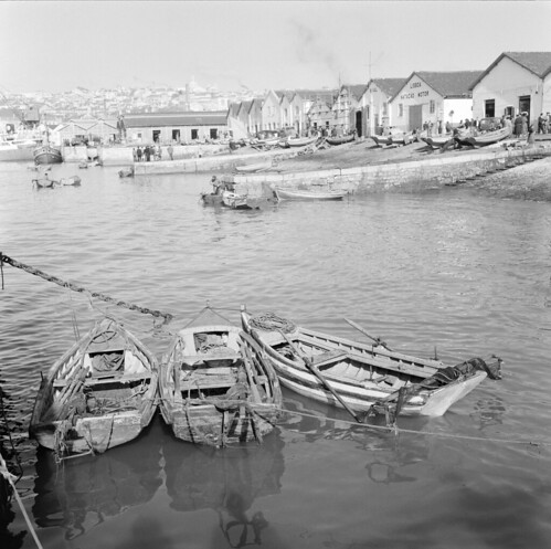Barcos de pesca, Ribeira de Lisboa (H.Novais, s.d.)