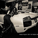 Auto Show Babe 2013-4061236
