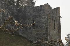 Turm - Wehrturm der Stadtbefestigung - Stadtmauer der Altstadt - Stadt Romont im Kanton Freiburg - Fribourg der Schweiz (chrchr_75) Tags: tower schweiz switzerland torre tour suisse swiss christoph svizzera turm mrz fortified 2014 suissa romont 1403 chrigu wehrturm fortificata chrchr fortifie hurni kantonfreiburg chrchr75 chriguhurni kantonfribourg chriguhurnibluemailch mrz2014 albumstadtromont albumwehrtrmekantonfreiburg