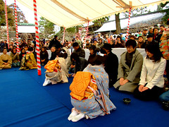 Baikasai () (ericlty) Tags: japan kyoto maiko geiko  teaceremony  ocha baikasai katsuya kitanotenmangushrine  kamishichiken   plumblossomfestival  ichiteru
