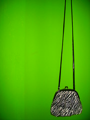 Little (Green) Bag (Aisha Reehuis) Tags: white black green wall bag klein groen little tas zwart wit enschede aisha muur catchycolorsgreen reehuis