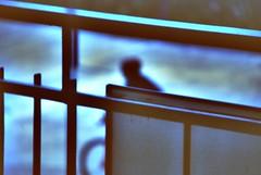 voil (plaisirdevivre) Tags: blu azzurro bicicletta mosso sconosciuto scatto veloce attimo