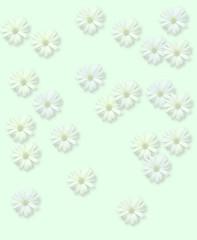 30 flores em fundo menta - branca amarela azul - flores mescladas e semi transparentes (leitedesoda) Tags: flores transparentes
