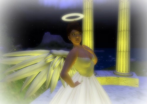 angel wings_003