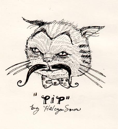 Pip by halcyonsnow