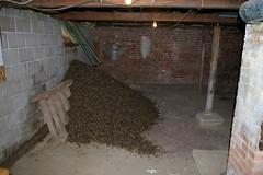 Anglų lietuvių žodynas. Žodis basement reiškia n 1) rūsys, pusrūsis; 2) pagrindas; pamatai lietuviškai.