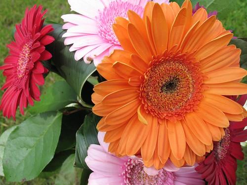 sac à fleur 001