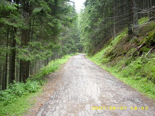 Pe drumul spre Pietrele Doamnei