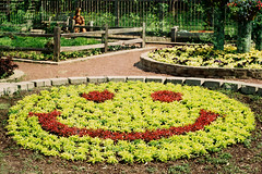 SMILE (bitznbitez ( was lucias_clay )) Tags: wood red plants green film smile face stone 35mm fence garden happy illinois bed fuji