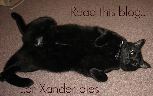 Xander, blog threat