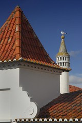 Portugal - Albufeira - Rooftops (Darrell Godliman) Tags: travel chimney copyright building travelling bird tourism portugal architecture buildings arquitectura nikon europe rooftops seagull eu roofs tiles architektur vernacular d200 algarve pt oldtown architettura albufeira allrightsreserved architectuur tiling mimari tiled architecturalphotography travelphotography   nikond200 instantfave larchitecture omot  travelphotographer flickrelite dgphotos darrellgodliman wwwdgphotoscouk architecturalphotographer dgodliman