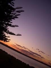 CIMG0222 (Queenbean79) Tags: australia nsw portmacquarie
