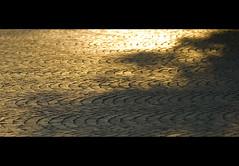 Scintillants de mille feux (nathaliehupin) Tags: pierre cobblestones paves ruines aout2008 photographebruxelles nathaliehupin abbayeaulne photographeluxembourg photographehainaut photographenamur photographeliege photographemons photographebelgique wwwnathaliehupinbe wwwnathaliehupingraphismebe