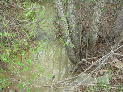 Sediment Runoff in a Stream