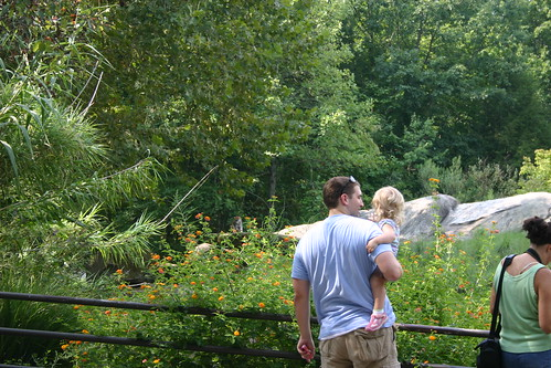 Daddy and Anna looking at the monkeys