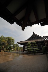 Kyoto 2008 - 三十三間堂(13)
