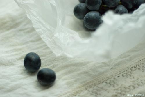 5165 : Kyohou grape