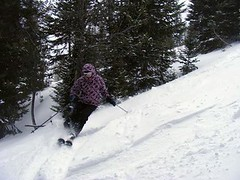 - Great Divide, MT skier