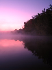 welcome to heaven (summerskyphoto) Tags: statepark park morning autumn sun lake reflection fall water leaves fog sunrise canon dawn woods michigan sessions ionia s5is onlythebestare