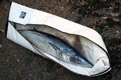 indabag (shappell) Tags: ocean sea fish cat hawaii fishing pacific maui catch ono makena wahu ikinui