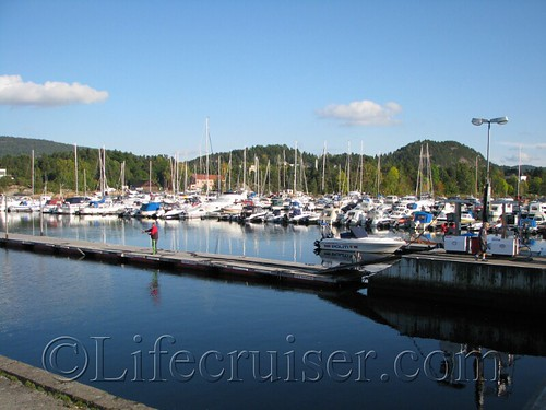 Harbor at the Fjord IMG_2663