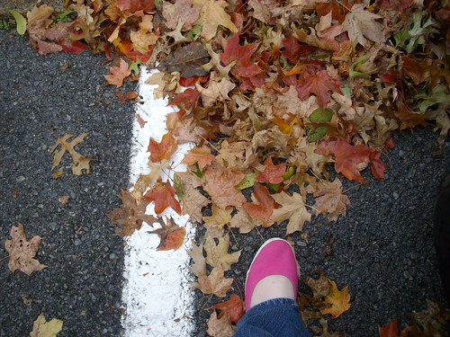 Pink shoes, brown leaves - 5/365