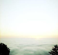 sun on fog's edge (lawatt) Tags: trees sunset sun 120 film silhouette fog kodak hasselblad simplicity portra skylineblvd fogbank sanmateocoast 400nc hwy35 120mmcf