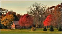 Colorful Wisconsin Farm (newagecrap) Tags: autumn wisconsin rural october fallcolors barns farms rosewood racinecounty scenicfarm