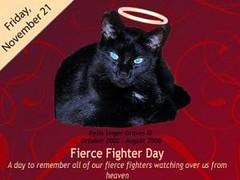 FierceFighterDay-300