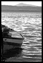 Partiendo (dayangchi) Tags: valencia agua embarcadero albufera ltytr1 a3b dayangchi