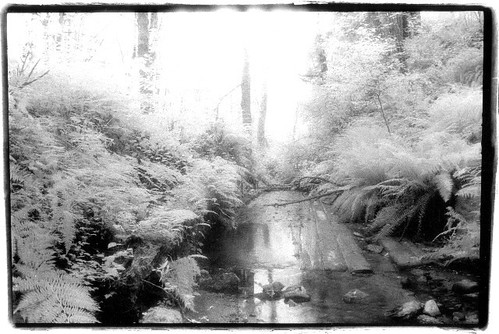 Coal Creek Flume IR