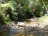 Charco azul river (Celt78) Tags: azul swimming puerto hole rico charco carite