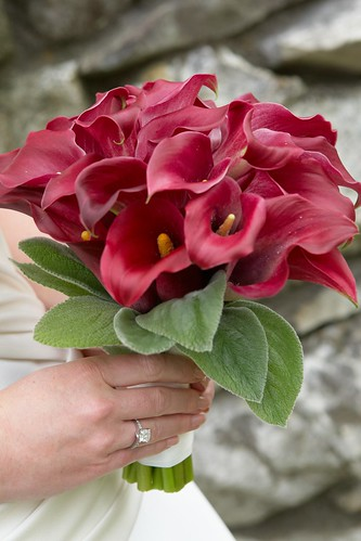 bridal bouquet, Bridal bouquet of all fuscia mini-calla lilies. Wedding flowers