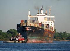 HORIZON TRADER (yo.becker) Tags: newjersey terminal cargo transportation tugboat tug containership tugs containers apm newarkbay apmterminal